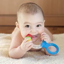 Bayi Suka Menggigit Sesuatu