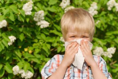 Sering Bersin dan Hidung Mampet