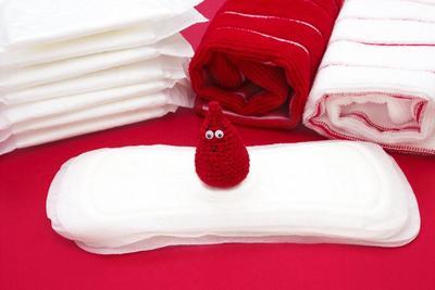 1. Sistem Reproduksi Menstruasi Pertama pada Anak