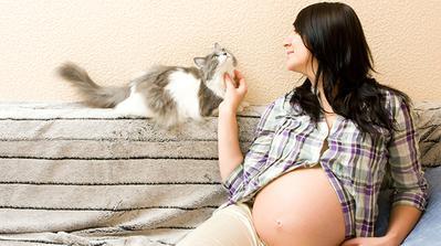 4 Aktivitas yang Pantang Dilakukan Ibu Hamil di Trimester Pertama Kehamilan