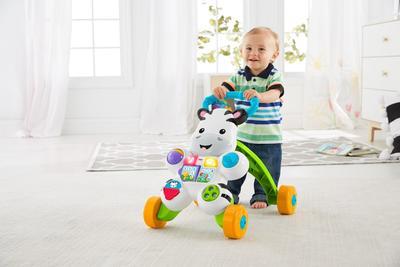 Tips Memilih dan Menggunakan Push Baby Walker