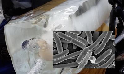 Wajib Tahu! Ini Dia Ciri-ciri Es Batu yang Terbuat Dari Air Mentah!
