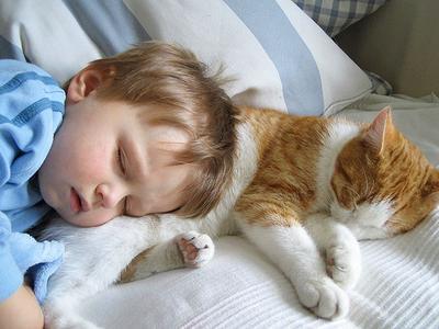 Memelihara kucing di rumah dan anak