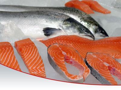 Suka Salmon Sashimi? Ternyata Ini Efek yang Didapatkan Setelah Mengonsumsinya