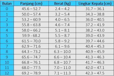 Tabel Berat Badan Ideal Bayi Perempuan 0-12 Bulan