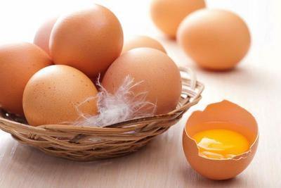4. Aneka Resep Masakan Telur