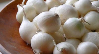 Bawang Putih Kaya Akan Manfaat Baik, Begini Cara Memanfaatkannya yang Benar