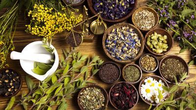Atasi Penyakit dengan Obat Herbal, di Mana Belinya?