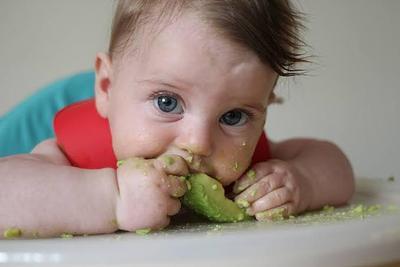Manfaat Alpukat untuk Bayi