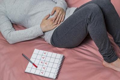 3. Siklus Menstruasi