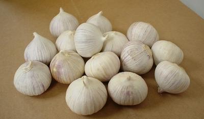 Atasi Kolesterol Jahat dengan Bawang Putih Tunggal. Bagaimana Caranya?