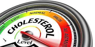 Daun Salam Untuk Kolesterol