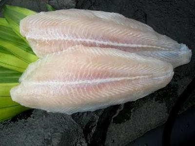 Moms, Cari Tahu Yuk Manfaat Ikan Dori dan Resepnya untuk Si Kecil!