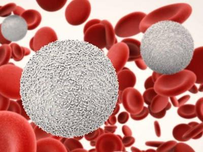 Penyebab Sel Darah Putih Naik