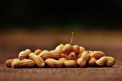 Stop Hindari Kacang Tanah! Ini Manfaat dan Cara Konsumsi Kacang Tanah untuk Diet