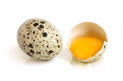 Waktu yang Tepat Memberikan Telur Puyuh Pada Bayi