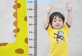 Makanan Peninggi Badan untuk Anak