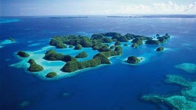 Tak Hanya Keindahan Alamnya, Kuliner Khas Kota Tual - Maluku Juga Bisa Bikin Lupa Diri