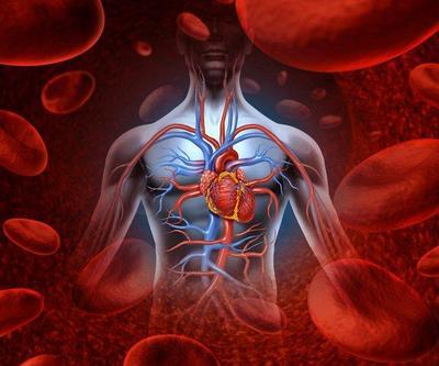 Melancarkan Sirkulasi Darah