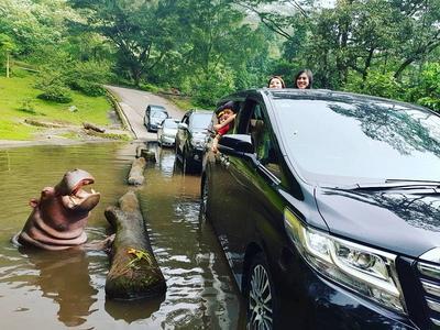 Taman Safari - Bogor