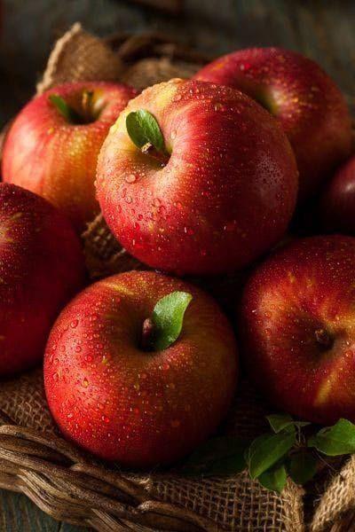 5 Jenis Makanan Yang Bisa Memperlancar Buang Air Besar Selain Pepaya