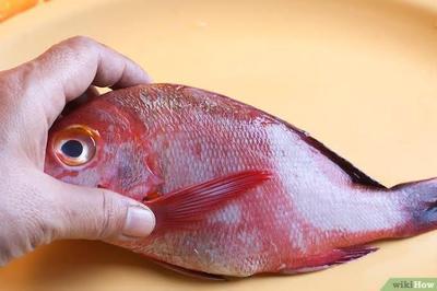 Tips Mengolah Kepala Ikan Kakap untuk Ibu Hamil
