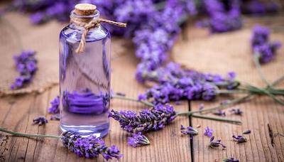Ampuh Atasi Ketombe Hingga Jerawat, Ini Ragam Manfaat Lavender Oil untuk Kecantikan