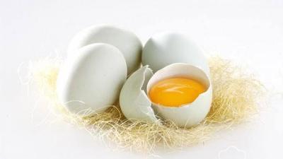 1. Telur Bebek