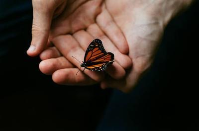 The Butterfly Project, Lawan Keinginan Menyakiti Diri Sendiri dengan Cara ini Yuk!