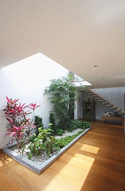 Tips dan Inspirasi Taman Kecil Dalam Rumah, Ciptakan Suasana Nyaman dan Segar Yuk!
