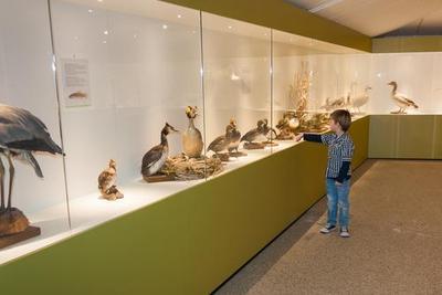 2. Museum binatang