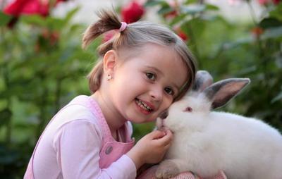 Kenali 4 Tipe Kepribadian Anak, Si Kecil yang Mana Moms?