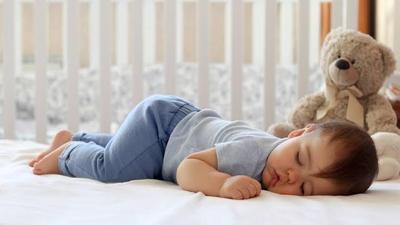 2. Perilaku Tidur